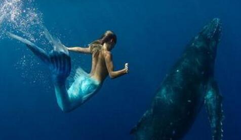 传说中的美人鱼也有男性 古籍记载多有丑陋者
