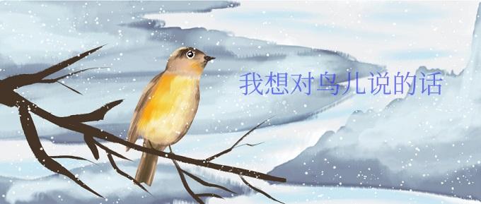 我想对鸟儿说的话英文句子