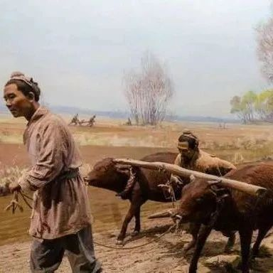 古代粮食总是不够吃,但土地那么多 为什么不去开荒种地?