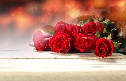 玫瑰花怎么养才不会枯萎(如何让玫瑰花持久不枯萎)