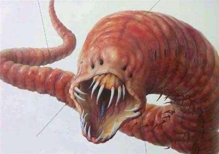 探秘全球十大神秘怪兽