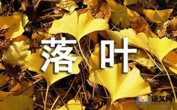 《落叶》小学语文课件